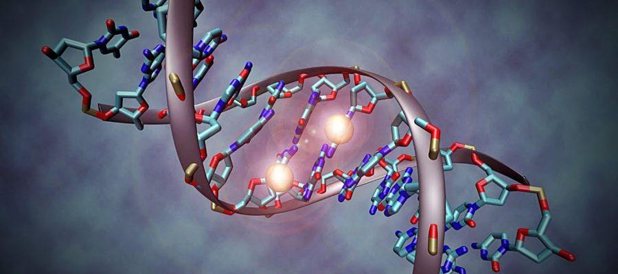 Epigenética.
